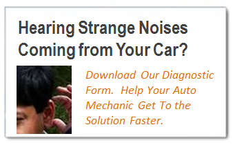 Download the Noises Diagnostic Form
